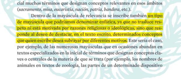 mayuscula_relevancia_1